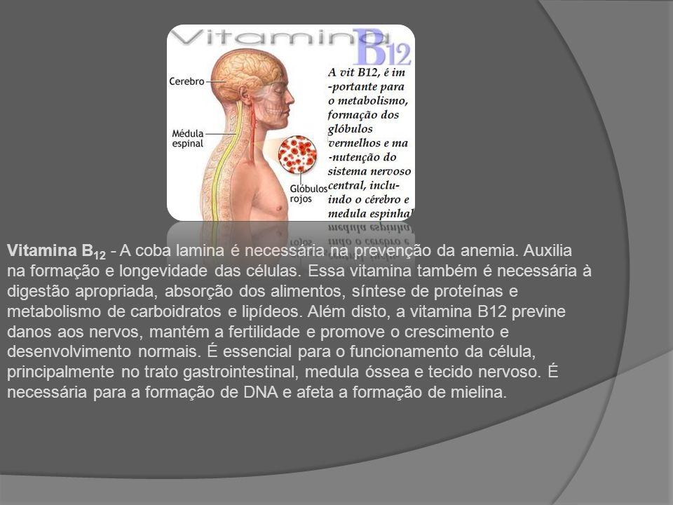 Vitamina B 12 - A coba lamina é necessária na prevenção da anemia. Auxilia na formação e longevidade das células. Essa vitamina também é necessária à