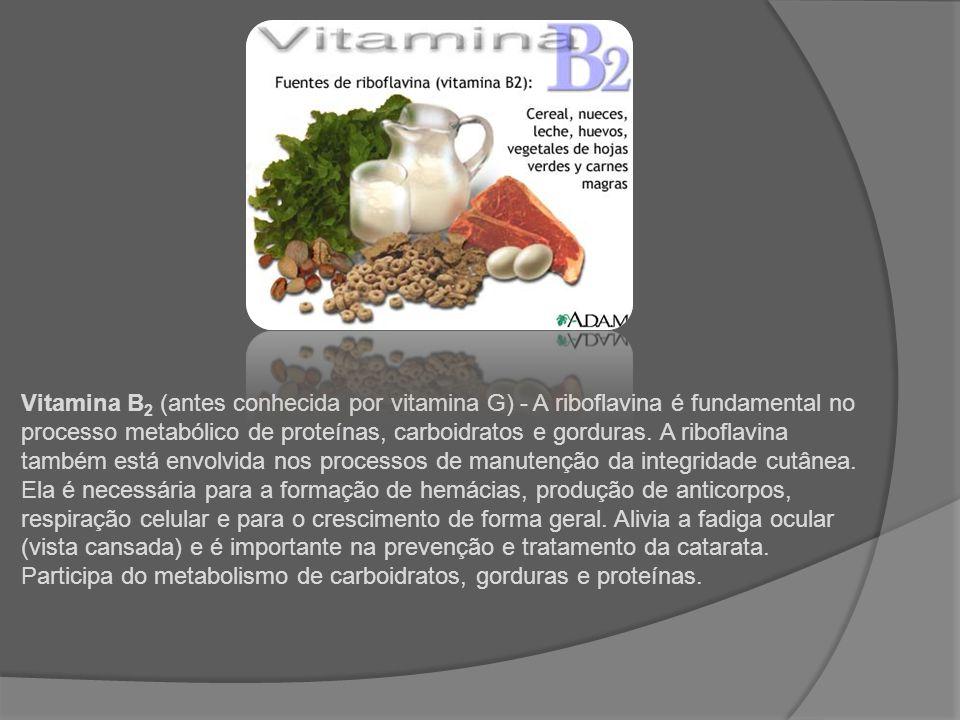 Vitamina B 2 (antes conhecida por vitamina G) - A riboflavina é fundamental no processo metabólico de proteínas, carboidratos e gorduras. A riboflavin