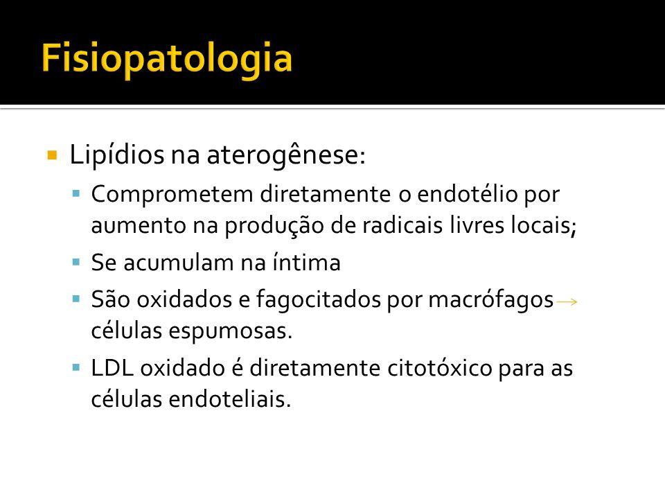 Lipídios na aterogênese: Comprometem diretamente o endotélio por aumento na produção de radicais livres locais; Se acumulam na íntima São oxidados e f