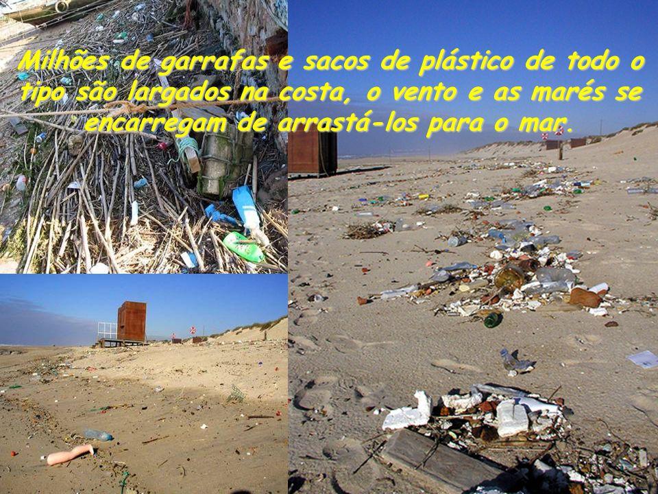 Milhões de garrafas e sacos de plástico de todo o tipo são largados na costa, o vento e as marés se encarregam de arrastá-los para o mar.