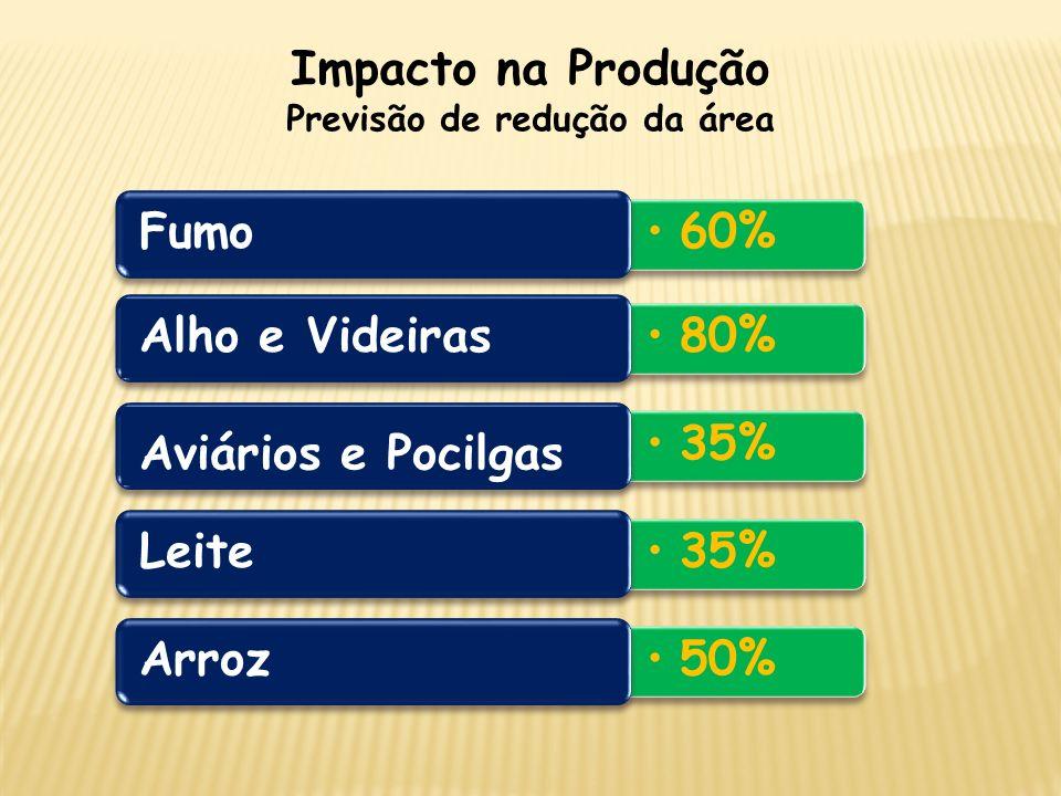 Impacto na Produção Previsão de redução da área 35% Aviários e Pocilgas 80% Alho e Videiras 35% Leite 60% Fumo 50% Arroz