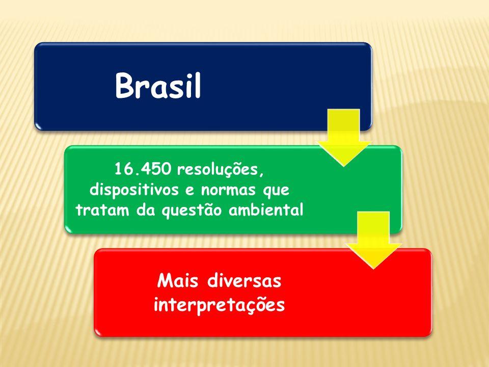 Brasil 16.450 resoluções, dispositivos e normas que tratam da questão ambiental Mais diversas interpretações