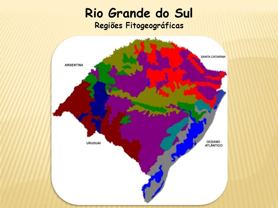 Rio Grande do Sul Regiões Fitogeográficas