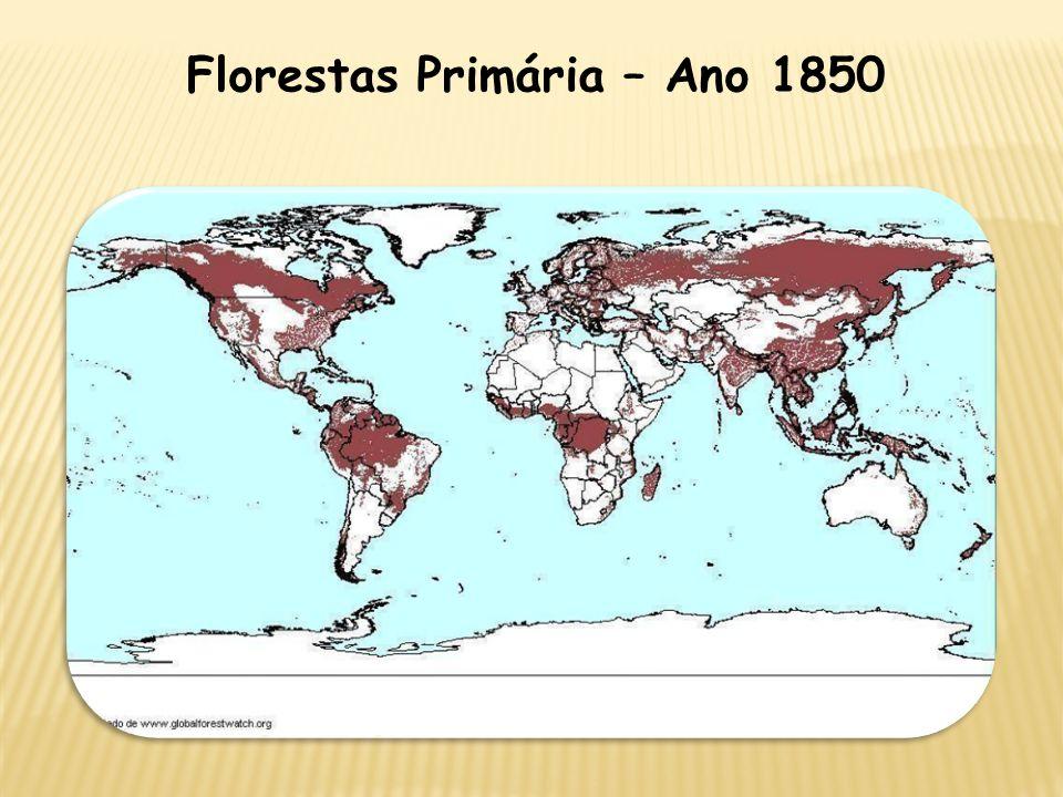 Florestas Primária – Ano 1850
