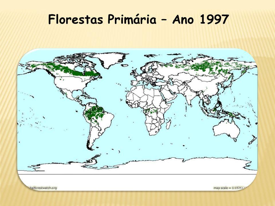 Florestas Primária – Ano 1997
