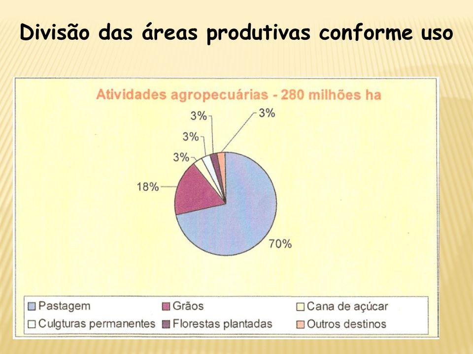 Divisão das áreas produtivas conforme uso PRODUÇÃO DE ALCOOL 40 bilhões de litros no mundo 25 bilhões para fins energéticos BRASIL – 15 bilhões de lit
