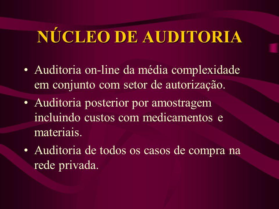 NÚCLEO DE AUDITORIA Auditoria on-line da média complexidade em conjunto com setor de autorização. Auditoria posterior por amostragem incluindo custos