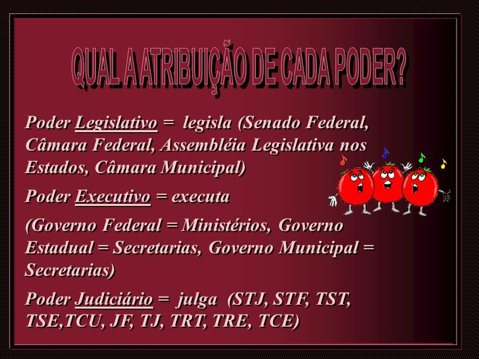 Poder Legislativo = legisla (Senado Federal, Câmara Federal, Assembléia Legislativa nos Estados, Câmara Municipal) Poder Executivo = executa (Governo