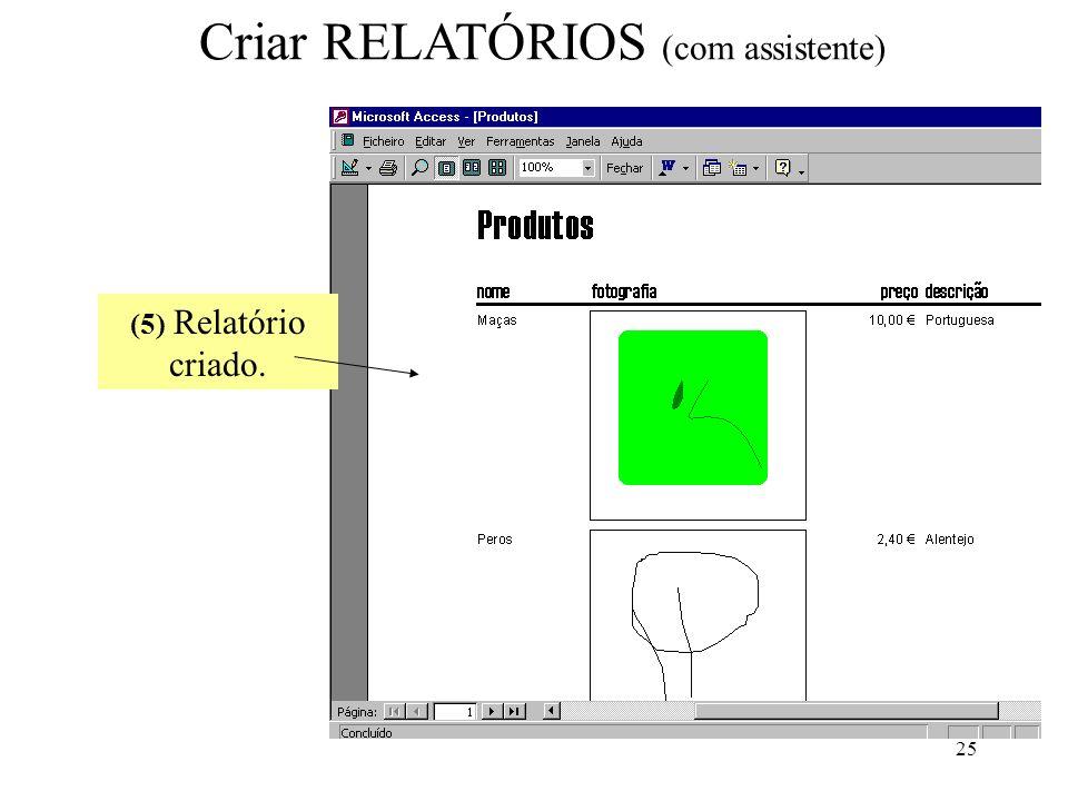 25 Criar RELATÓRIOS (com assistente) (5) Relatório criado.