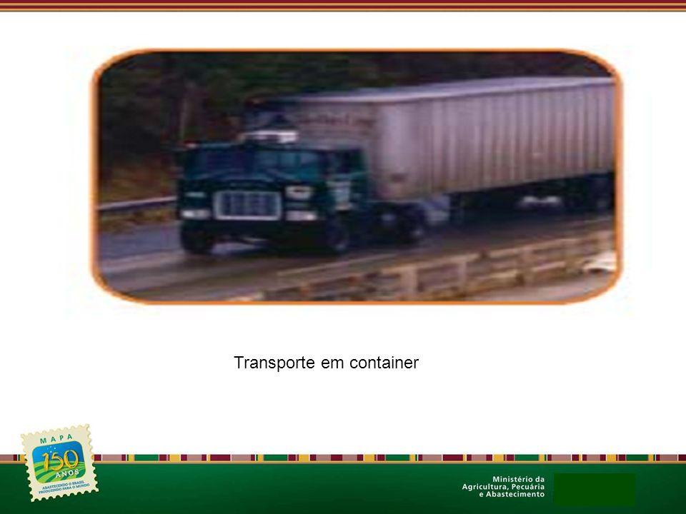 Transporte em container