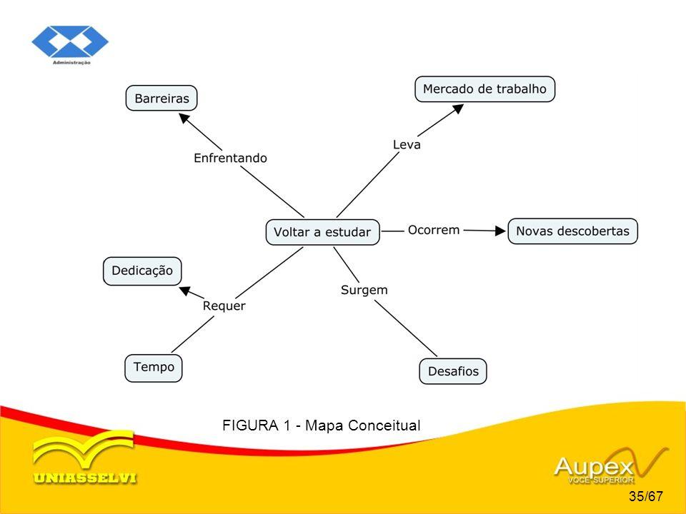 FIGURA 1 - Mapa Conceitual 35/67