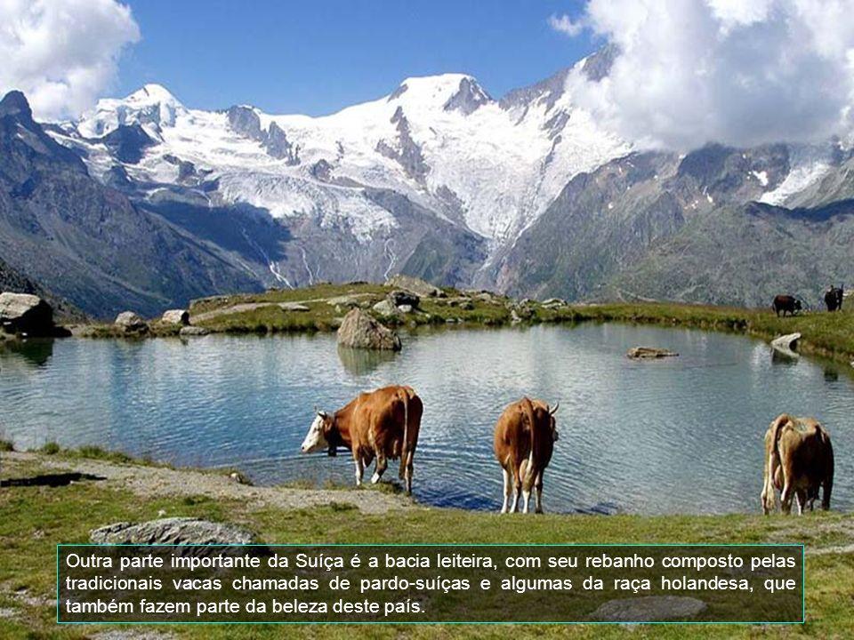 Aqui é a beleza natural deste país que possui uma área de 42.300 km2., dos quais 1.289 são cobertos por lagos, é o começo dos Alpes, chamado de pré-alpes.