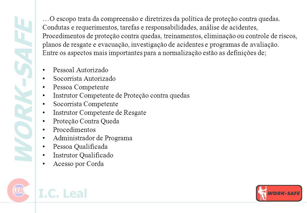 WORK-SAFE I.C. Leal -Resgate na distribuição 02 socorristas – Linha de vida simples