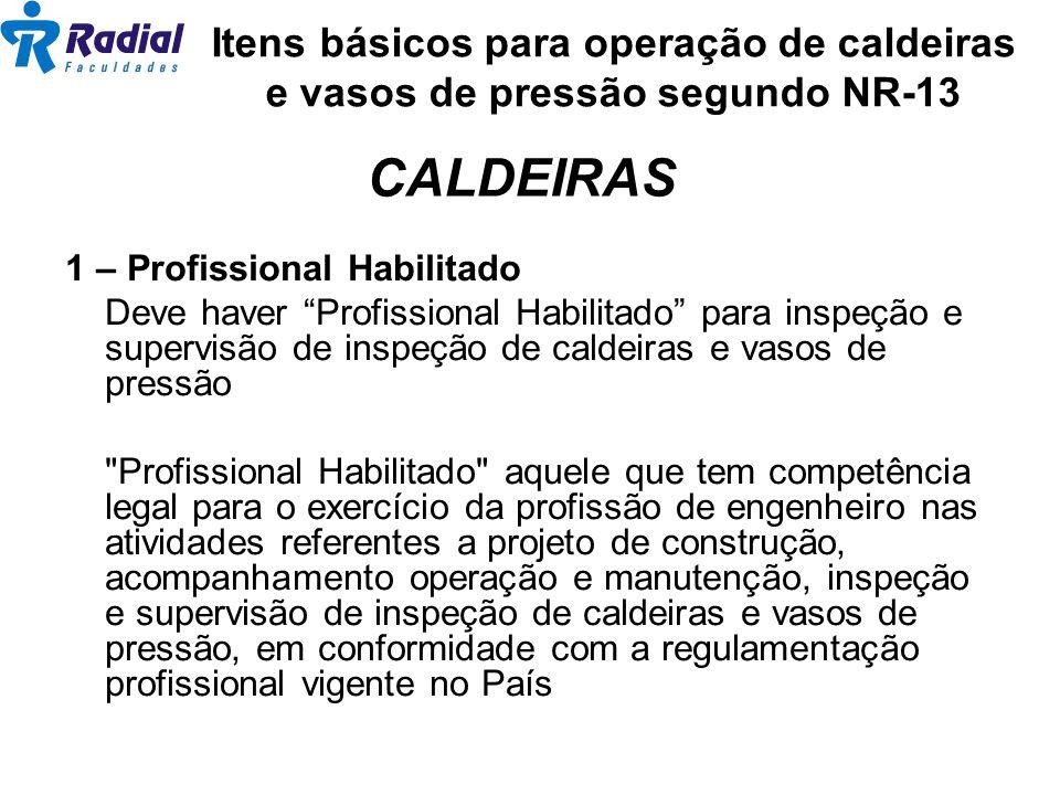 Itens básicos para operação de caldeiras e vasos de pressão segundo NR-13 1 – Profissional Habilitado Deve haver Profissional Habilitado para inspeção