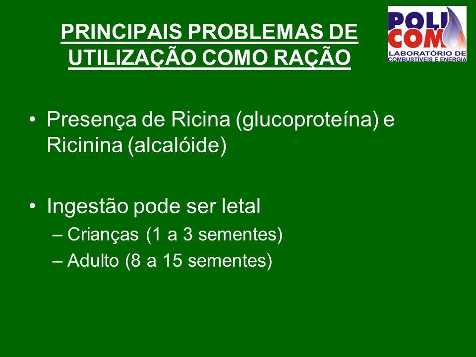 PRINCIPAIS PROBLEMAS DE UTILIZAÇÃO COMO RAÇÃO Presença de Ricina (glucoproteína) e Ricinina (alcalóide) Ingestão pode ser letal –Crianças (1 a 3 sementes) –Adulto (8 a 15 sementes)