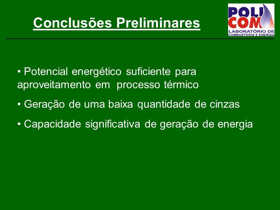 Conclusões Preliminares Potencial energético suficiente para aproveitamento em processo térmico Geração de uma baixa quantidade de cinzas Capacidade significativa de geração de energia