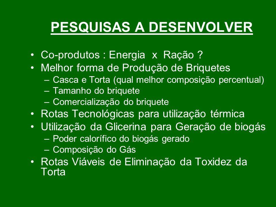 PESQUISAS A DESENVOLVER Co-produtos : Energia x Ração .