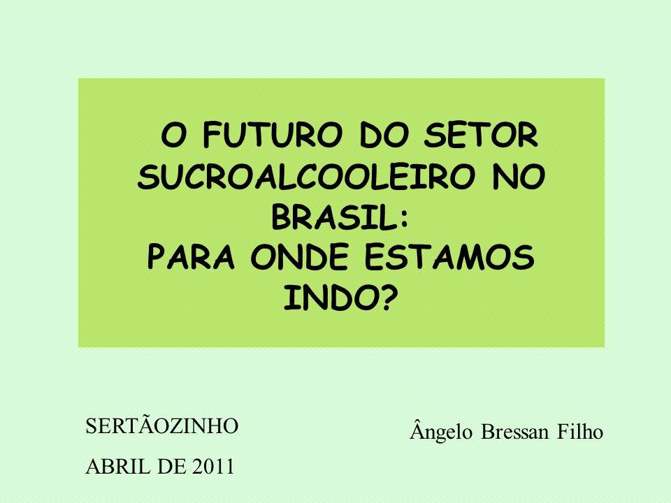 O FUTURO DO SETOR SUCROALCOOLEIRO NO BRASIL: PARA ONDE ESTAMOS INDO.