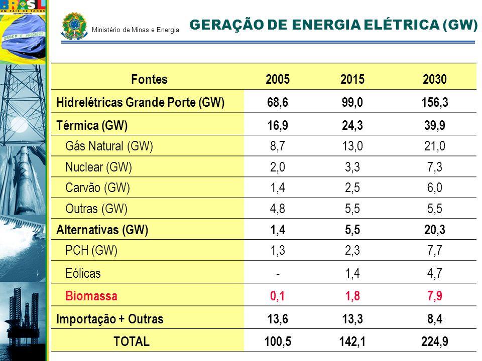 GERAÇÃO DE ENERGIA ELÉTRICA (GW) Fontes200520152030 Hidrelétricas Grande Porte (GW)68,699,0156,3 Térmica (GW)16,924,339,9 Gás Natural (GW)8,713,021,0