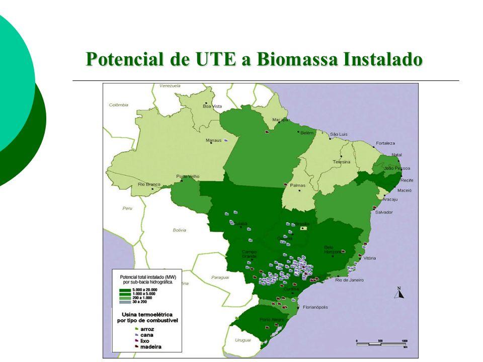Potencial de UTE a Biomassa Instalado