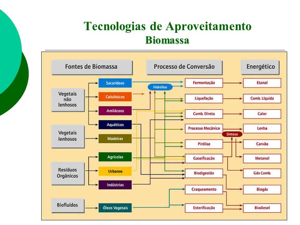 Biomassa Tecnologias de Aproveitamento Biomassa