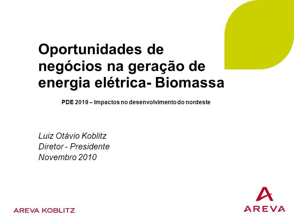 Oportunidades de negócios na geração de energia elétrica- Biomassa Luiz Otávio Koblitz Diretor - Presidente Novembro 2010 PDE 2019 – Impactos no desenvolvimento do nordeste