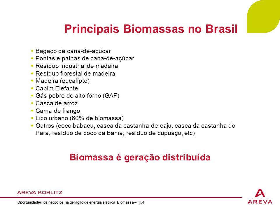 Potencial de Geração de Energia no Setor Sucroalcooleiro - (Bagaco + Pontas e Palhas) 60 Milhões TC X 203,2 KWh/TC = 12.192.00 MWh ÷ 8760h = 1.361 MW med Carga de Energia Elétrica - 2007 Fonte: ONS/16/11/2010 16% NE 56.675 MW med 9.878 MW med 8.560 MW med 4.064 MW med 34.173 MW med BrasilSNENSE/CO Oportunidades de negócios na geração de energia elétrica- Biomassa – p.15