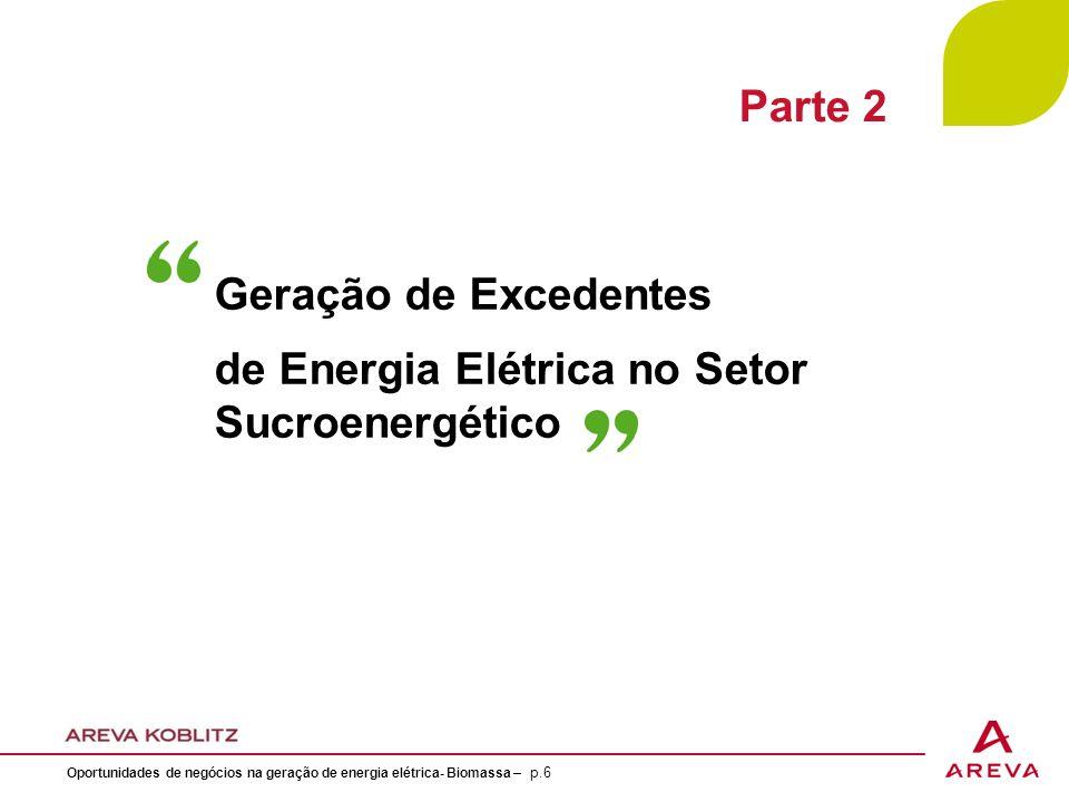 Geração de Excedentes de Energia Elétrica no Setor Sucroenergético Oportunidades de negócios na geração de energia elétrica- Biomassa – p.6 Parte 2