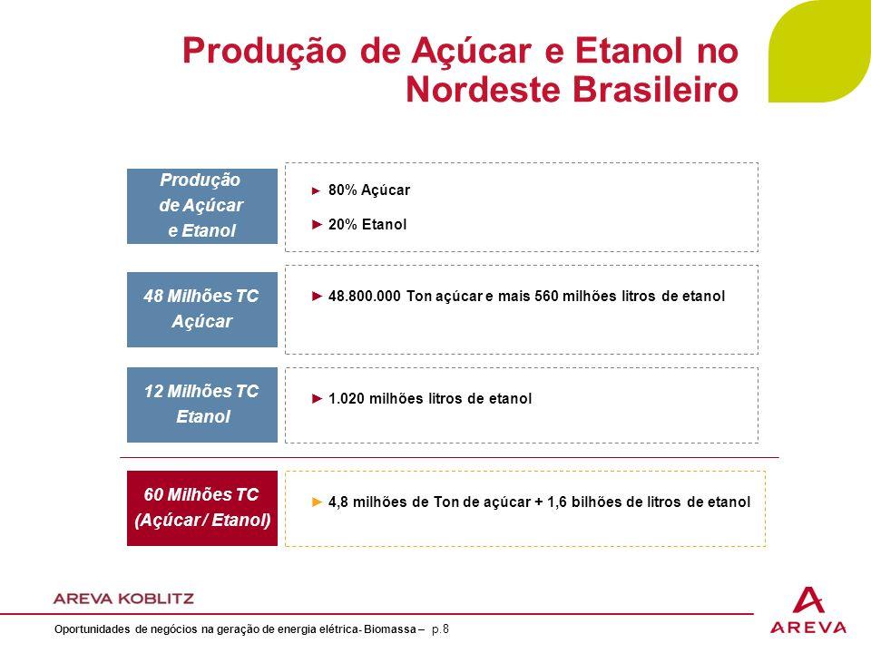 Produção de Açúcar e Etanol no Nordeste Brasileiro 80% Açúcar 20% Etanol Produção de Açúcar e Etanol 48.800.000 Ton açúcar e mais 560 milhões litros de etanol 48 Milhões TC Açúcar 1.020 milhões litros de etanol 12 Milhões TC Etanol 60 Milhões TC (Açúcar / Etanol) 4,8 milhões de Ton de açúcar + 1,6 bilhões de litros de etanol Oportunidades de negócios na geração de energia elétrica- Biomassa – p.8