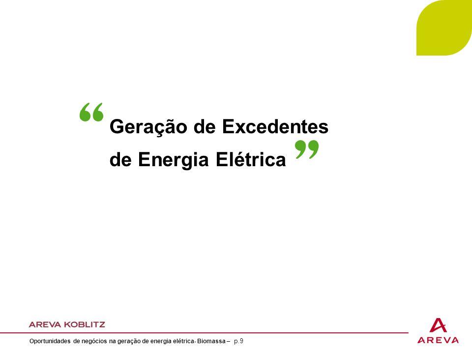 Geração de Excedentes de Energia Elétrica Oportunidades de negócios na geração de energia elétrica- Biomassa – p.9
