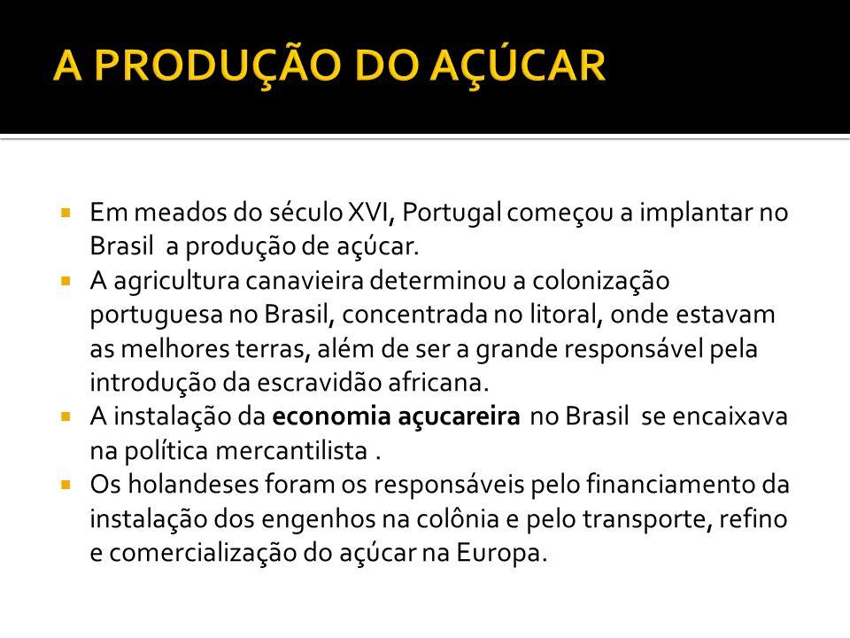 Em meados do século XVI, Portugal começou a implantar no Brasil a produção de açúcar.