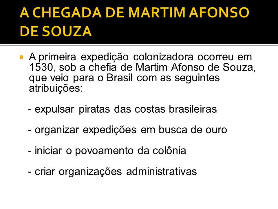 A primeira expedição colonizadora ocorreu em 1530, sob a chefia de Martim Afonso de Souza, que veio para o Brasil com as seguintes atribuições: - expulsar piratas das costas brasileiras - organizar expedições em busca de ouro - iniciar o povoamento da colônia - criar organizações administrativas