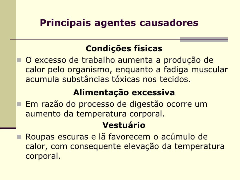 Principais agentes causadores Condições físicas O excesso de trabalho aumenta a produção de calor pelo organismo, enquanto a fadiga muscular acumula s