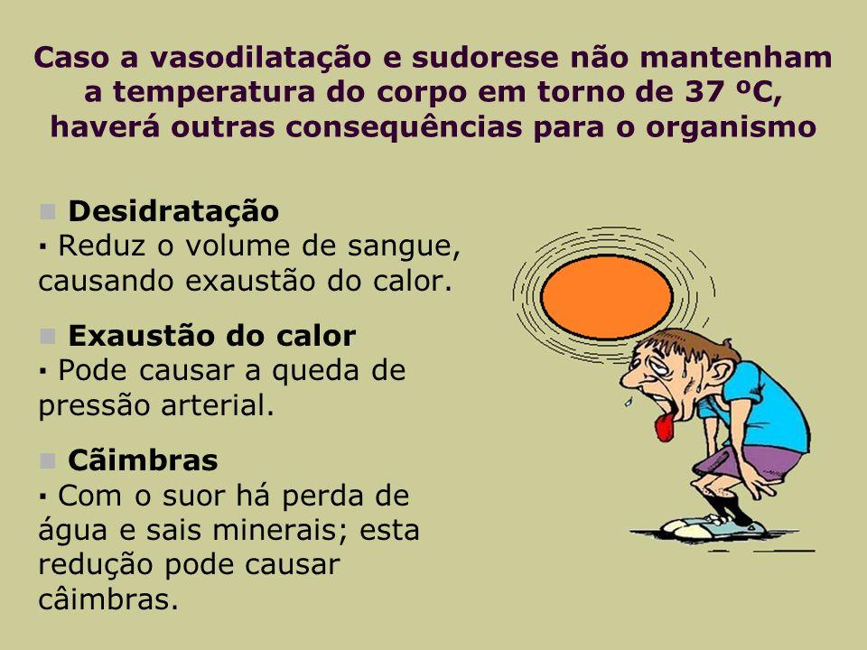 Caso a vasodilatação e sudorese não mantenham a temperatura do corpo em torno de 37 ºC, haverá outras consequências para o organismo Desidratação · Reduz o volume de sangue, causando exaustão do calor.