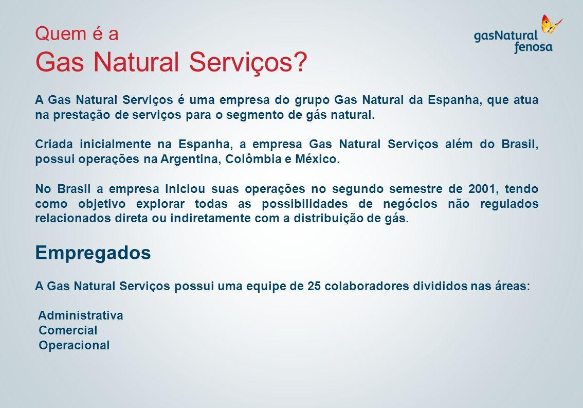 Quem é a Gas Natural Serviços? A Gas Natural Serviços é uma empresa do grupo Gas Natural da Espanha, que atua na prestação de serviços para o segmento