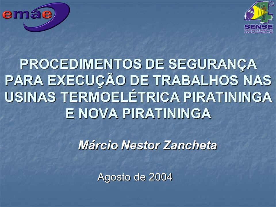 PROCEDIMENTOS DE SEGURANÇA PARA EXECUÇÃO DE TRABALHOS NAS USINAS TERMOELÉTRICA PIRATININGA E NOVA PIRATININGA Márcio Nestor Zancheta Agosto de 2004