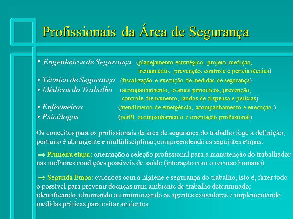 Profissionais da Área de Segurança Os conceitos para os profissionais da área de segurança do trabalho foge a definição, portanto é abrangente e multi