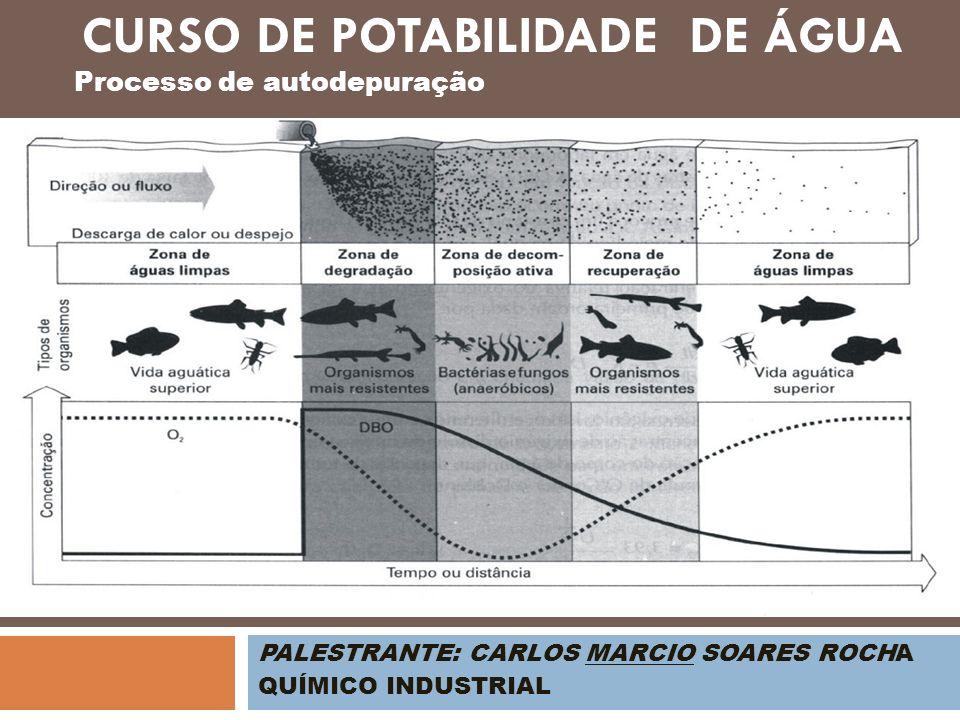 PALESTRANTE: CARLOS MARCIO SOARES ROCHA QUÍMICO INDUSTRIAL Processo de autodepuração CURSO DE POTABILIDADE DE ÁGUA