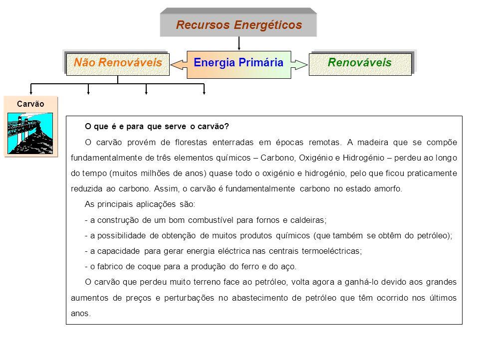 PetróleoCarvão Energia Primária Não RenováveisRenováveis Recursos Energéticos O que é e para que serve o petróleo.