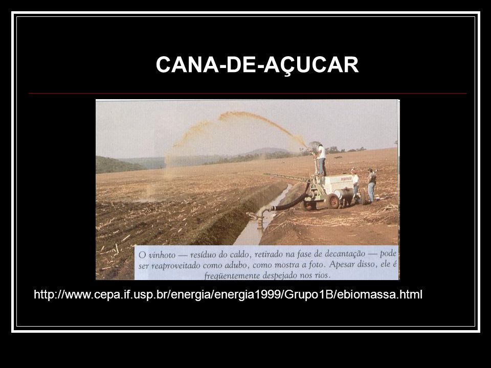 Principais formas aproveitáveis da biomassa no estado bruto Madeira Produtos e resíduos agrícolas Resíduos florestais Resíduos pecuários Lixo