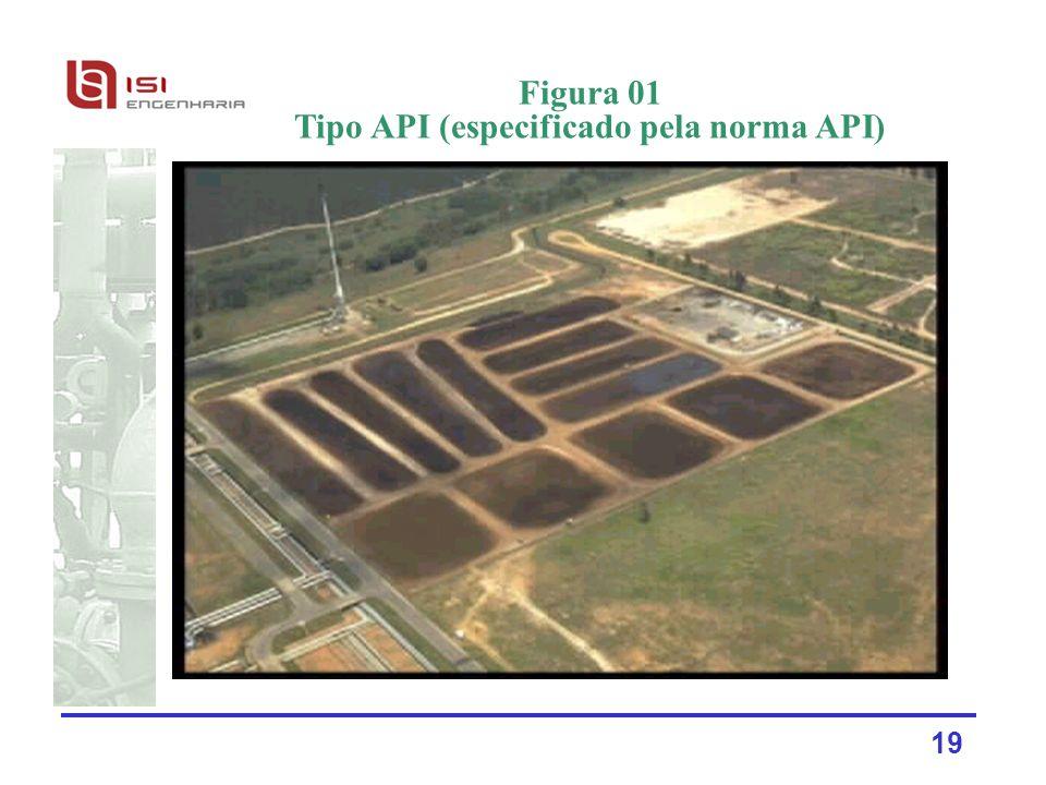 19 Figura 01 Tipo API (especificado pela norma API)