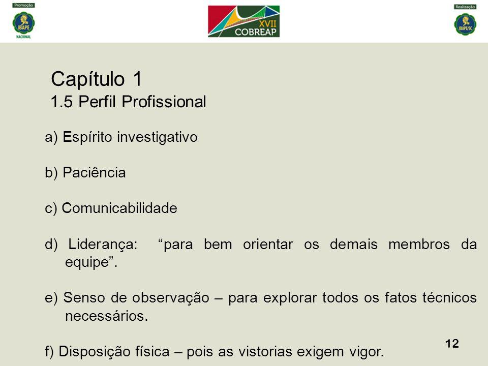 Capítulo 1 12 1.5 Perfil Profissional a) Espírito investigativo b) Paciência c) Comunicabilidade d) Liderança: para bem orientar os demais membros da equipe.