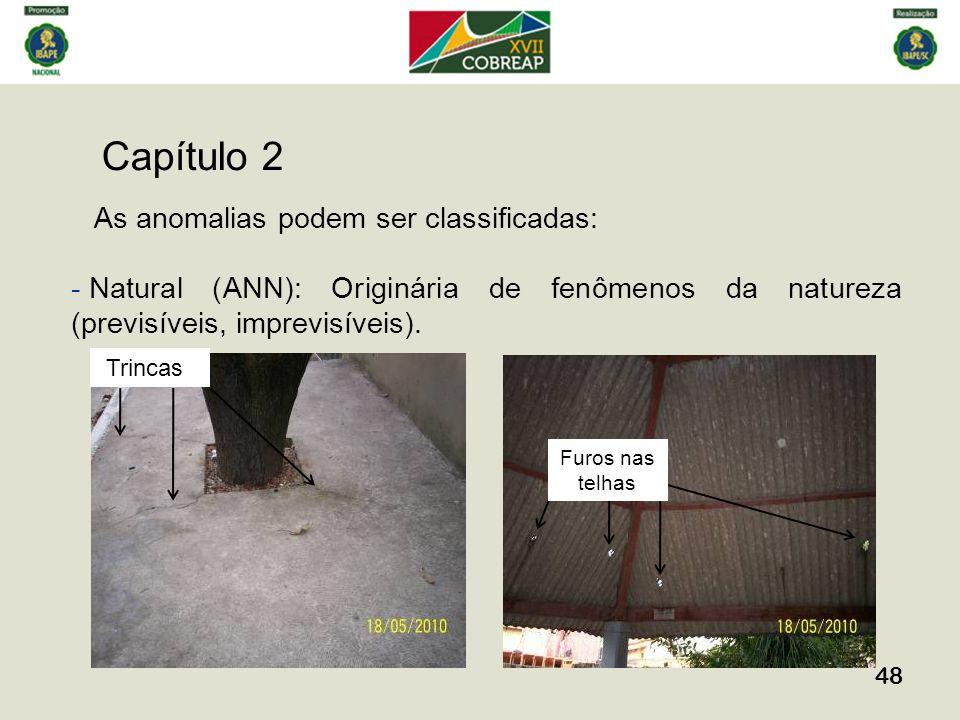 Capítulo 2 48 As anomalias podem ser classificadas: - Natural (ANN): Originária de fenômenos da natureza (previsíveis, imprevisíveis). Furos nas telha