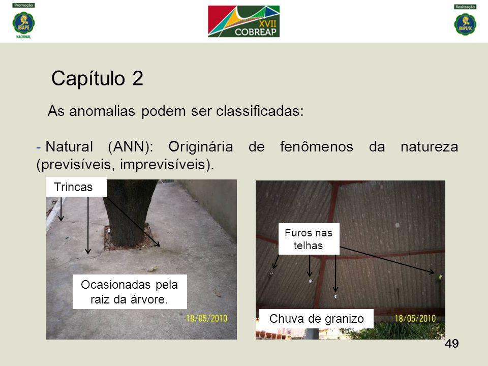 Capítulo 2 49 As anomalias podem ser classificadas: - Natural (ANN): Originária de fenômenos da natureza (previsíveis, imprevisíveis). Furos nas telha