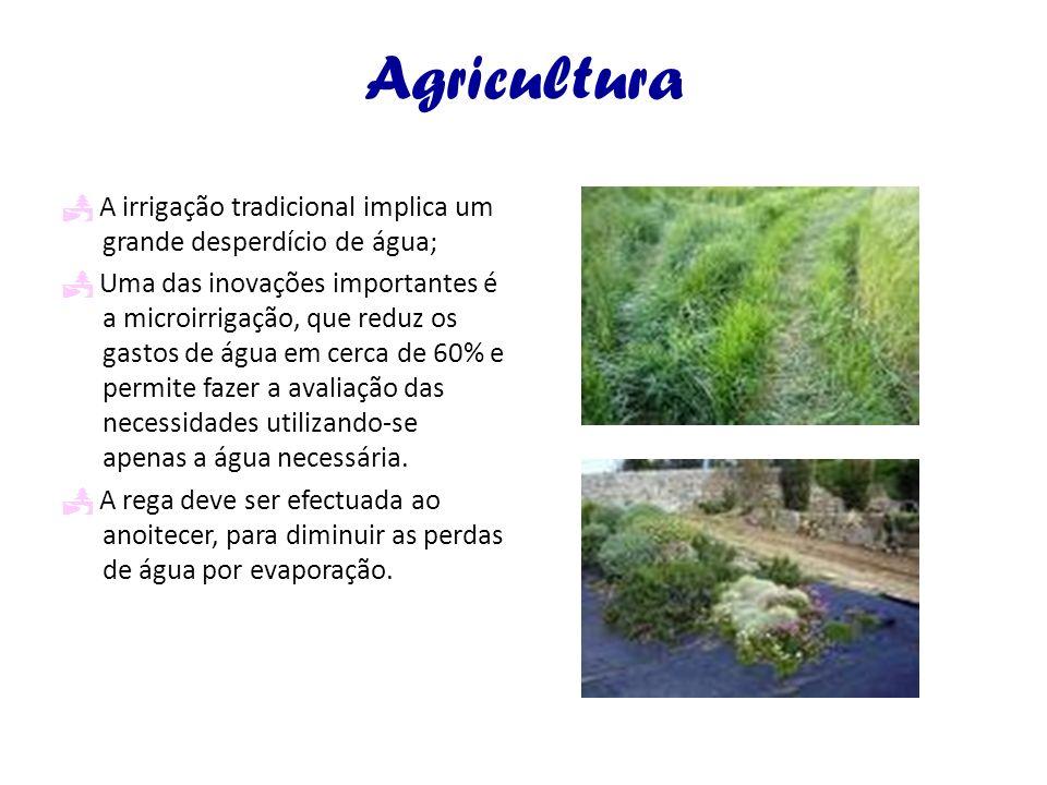 Agricultura A irrigação tradicional implica um grande desperdício de água; Uma das inovações importantes é a microirrigação, que reduz os gastos de ág