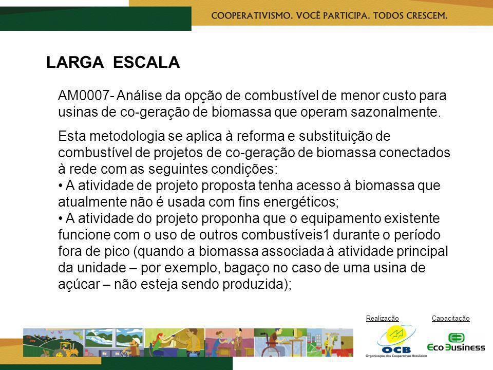 RealizaçãoCapacitação LARGA ESCALA AM0007- Análise da opção de combustível de menor custo para usinas de co-geração de biomassa que operam sazonalment