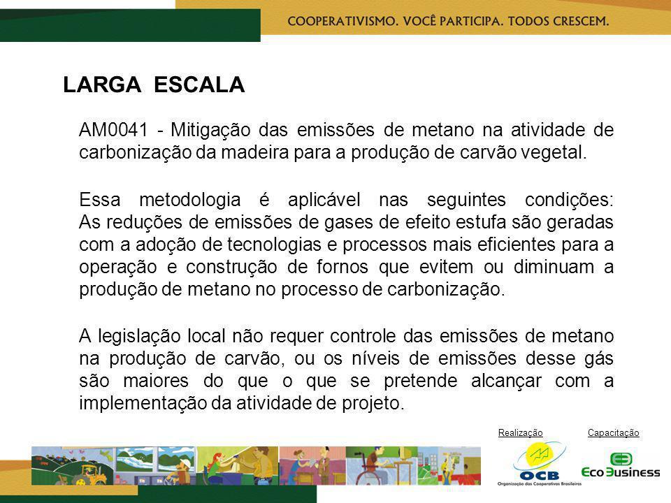 RealizaçãoCapacitação LARGA ESCALA AM0041 - Mitigação das emissões de metano na atividade de carbonização da madeira para a produção de carvão vegetal