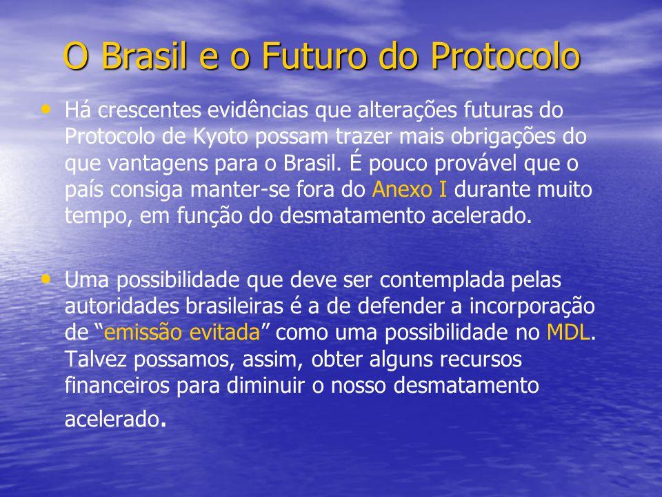 O Brasil e o Futuro do Protocolo O Brasil e o Futuro do Protocolo Há crescentes evidências que alterações futuras do Protocolo de Kyoto possam trazer