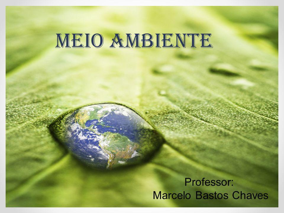 Professor: Marcelo Bastos Chaves MEIO AMBIENTE
