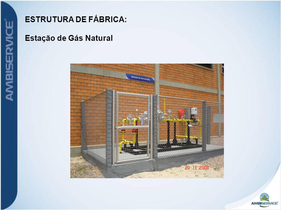 ESTRUTURA DE FÁBRICA: Estação de Gás Natural